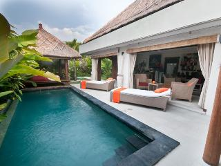 Nice Villa Seminyak Bali 2 bd