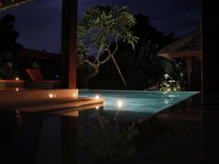 Nice Villa Andrea Bali 3bd, Ungasan