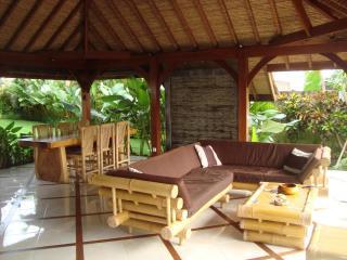 Nice Villa Andrea Bali 3bd