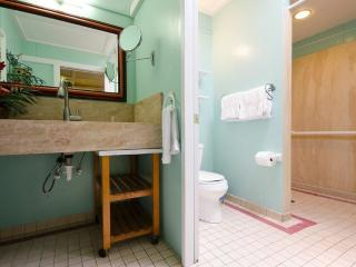 Ginger Studio - bathroom and Shower area