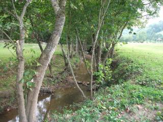 Creek Frontage