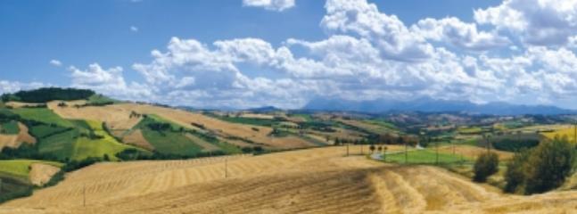 Sourrounding Hills panoramas
