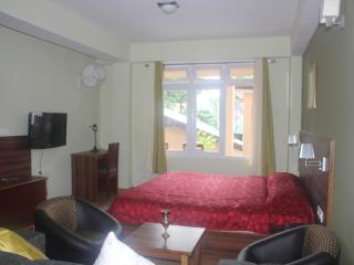 Shumbuk Homes Studio Apartment, Gangtok