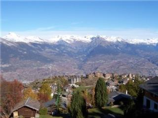 Top Chalet MOLAVI - Ski in Ski out - Mont Fort