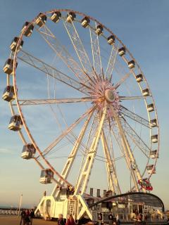 Diamond wheel on the Zeelheldenplein in June 2013
