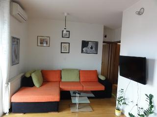 Home4*You (with garage) in Zagreb