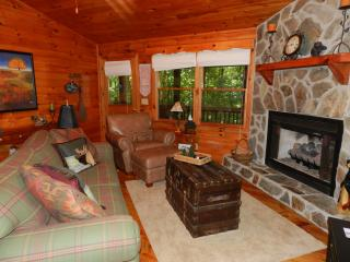 Living room with gas fireplace and queen sleeper