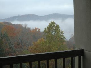 Early Morning Fog from the Deck