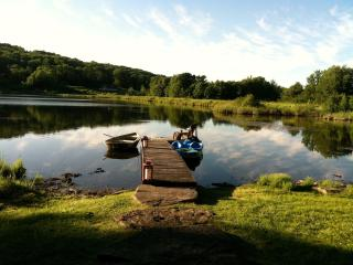 Beautiful LAKE FRONT Log Cabin  - CATSKILLS, NY., Stamford