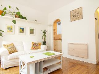Beautiful apartment rental in Paris Montparnasse