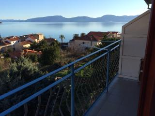 Apartment Nikolic,Gradac(2+1)