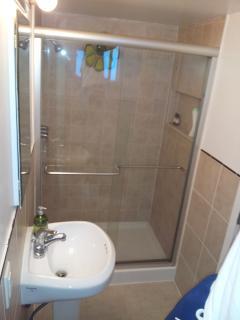 Large modern shower