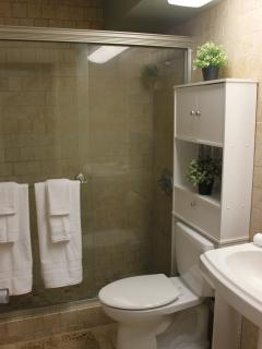Bathroom tile from floor to ceiling