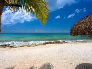 Las Uvas II:  One bedroom in Paradise!