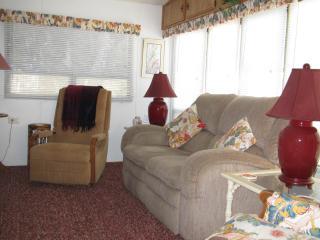 living room  queen SLEEPER