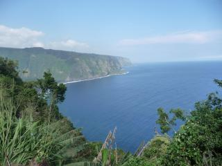 Oceanfront 2BRM, Waipio's Beach below,orchard