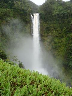 Akaka Falls on the way to Hilo