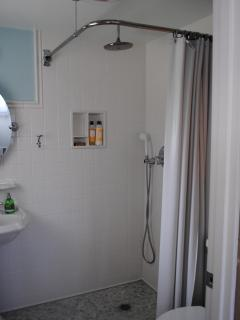 a rainfall shower plus a hand-held shower,
