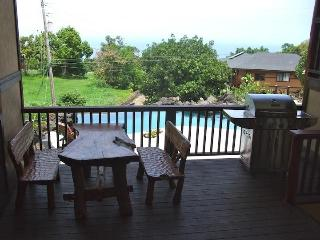 Tropical Paradise Home Heated Pool, Spa, Falls (M)
