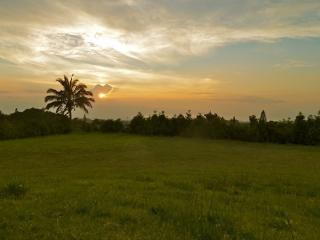 4BR Upcountry Home, Incredible Views, Walk into Historic Makawao Town!