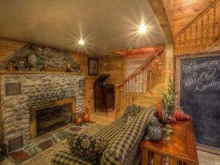 Wise Owl Landing's Living room has gas stove and warm earth tones