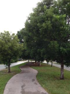 Walking Park across the street
