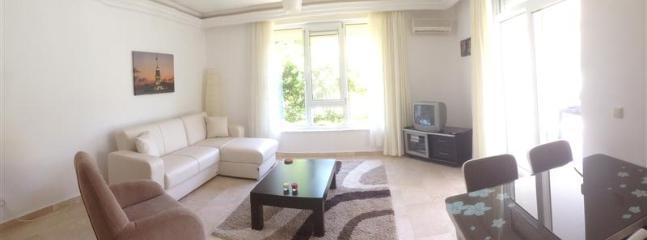 Nice light living room