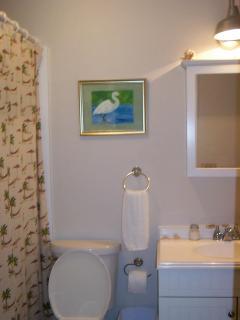 full bath w/ fabulous tub/shower