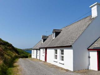 SHARK 1, wonderful sea views, open fire, en-suite bathroom, nearSkibbereen