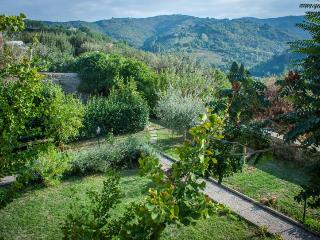 14th Century cute flat with garden - Casa Foresti, Bettona