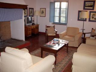 Farmhouse Rental in Tuscany, Castellina Scalo - Rosalia 2, Castellina In Chianti