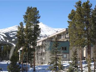 Economically Priced In Town 2 Bedroom Condo - Ski and Racquet B102, Breckenridge