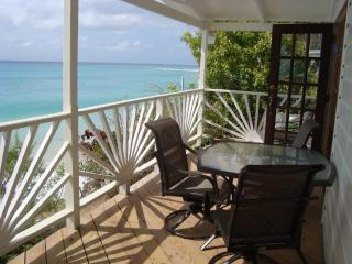 Plombagine Cottage- Ocean Front 2 Bdrm w/ AC & WIFI, St. James