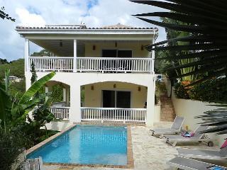 Satori Villa St John walk to water, pool, full house a/c, hottub, St. John