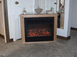 Electrice fire place