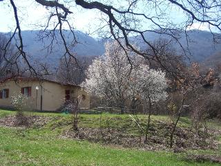 Bed and Breakfast, Bagnara di Romagna