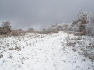 Snow n the mountain.  4 season property