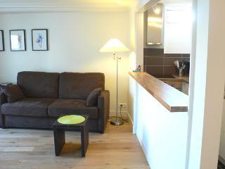 Two bedrooms   Paris Saint Germain des Pres district (343)