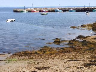OCEANFRONT - Fish 'n Shells Cottage