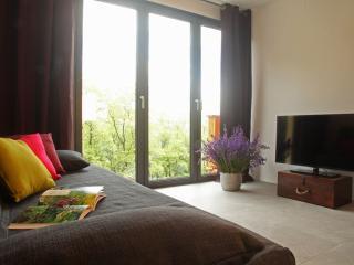 Apartments Lom-the Chestnut Flat