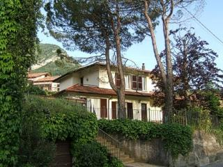 Spacious apartment in villa with lovely  garden, Lierna
