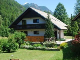 Holiday House Trata - Apt 1 - Spacious apt (95 m2), Kranjska Gora