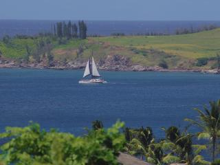 Ocean View + Discount Golf = Fabulous Vacation!, Kapalua