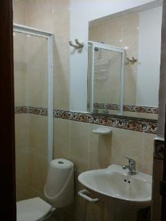 Cmpletely Renovated Main Bathroom April 2014