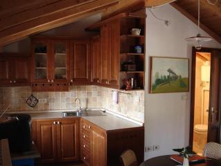 Apartment A1 kitchen