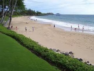 Your Maui Escape! Enjoy Paradise in the palm of your hand, Steps to the Beach!