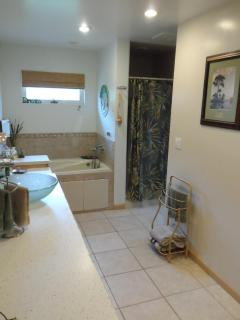 Master bath with large walk in closet, Corian counter tops and walk in shower.