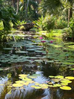 Beautiful McKee Jungle Garden located in Vero Beach