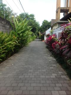 Shaded garden path to Bintang Supermarket