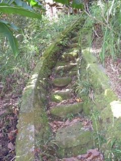 steps leading dow to the stream